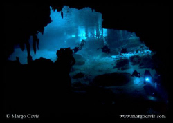 Dos Ojos Cenote in Mexico by Margo Cavis 